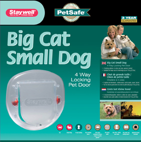 Big Cat Small Dog